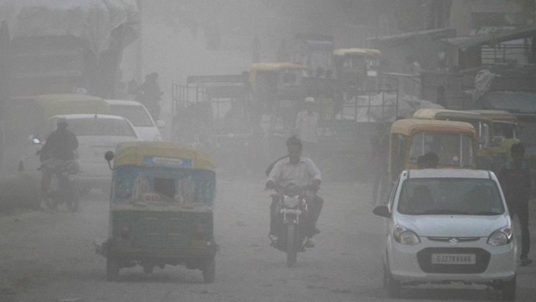 Trafik i smutsig dimma på gata i Indien