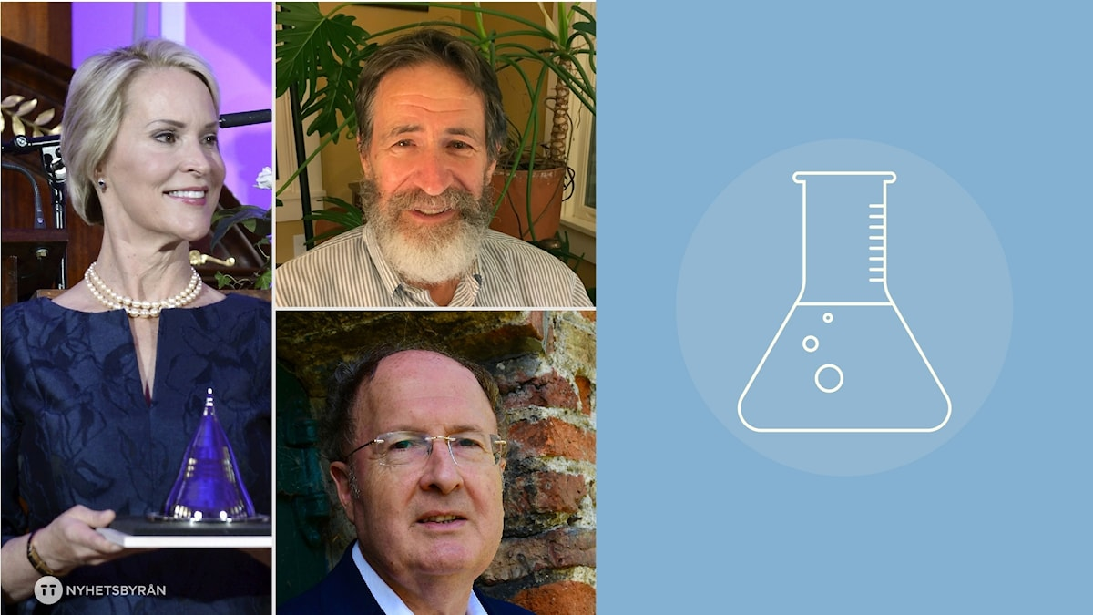 Nobelpristagarna i kemi: Frances H. Arnold samt George P. Smith och Sir Gregory P. Winter.
