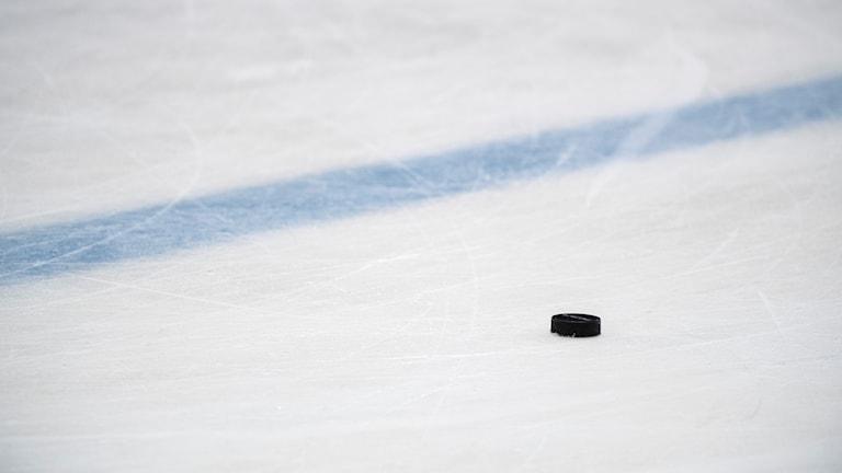 Ishockey puck rink hockey