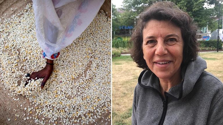 Silvia Caruso (t.h) menar att matbrist kan orsaka konflikt, men livsmedelsförsörjning kan också bidra till freden.