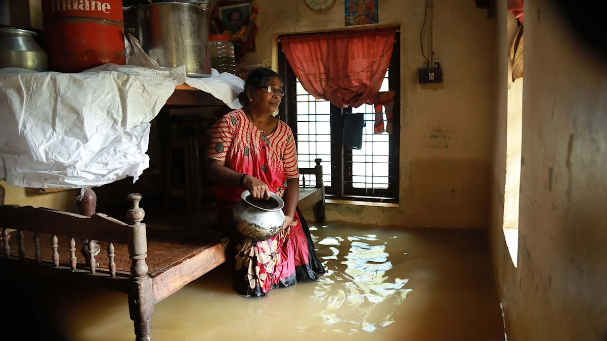 En indisk kvinna i sitt översvämmade hus