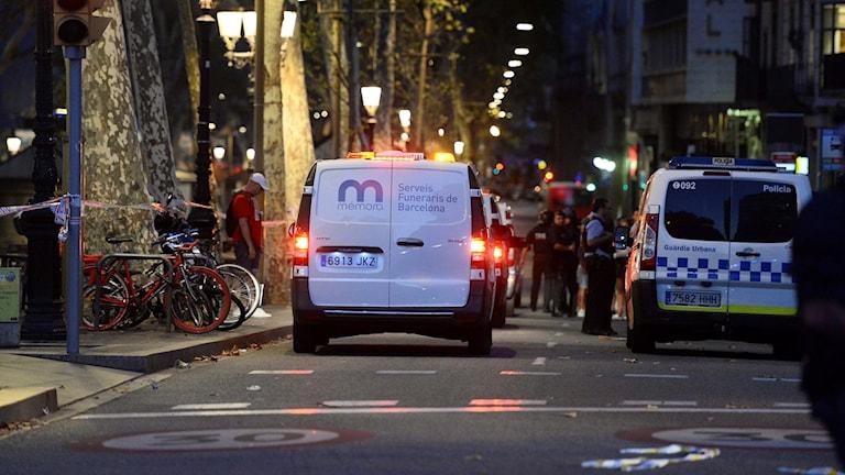 två fordon på gata.