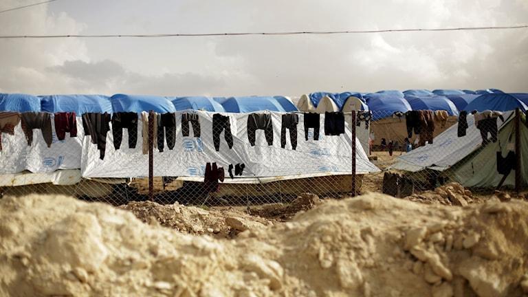 IS-lägret al-Hol i Syrien.
