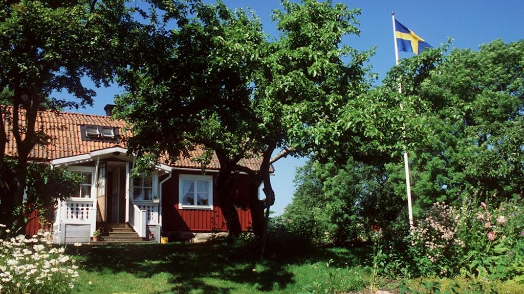 En röd stuga och en svenskflagga