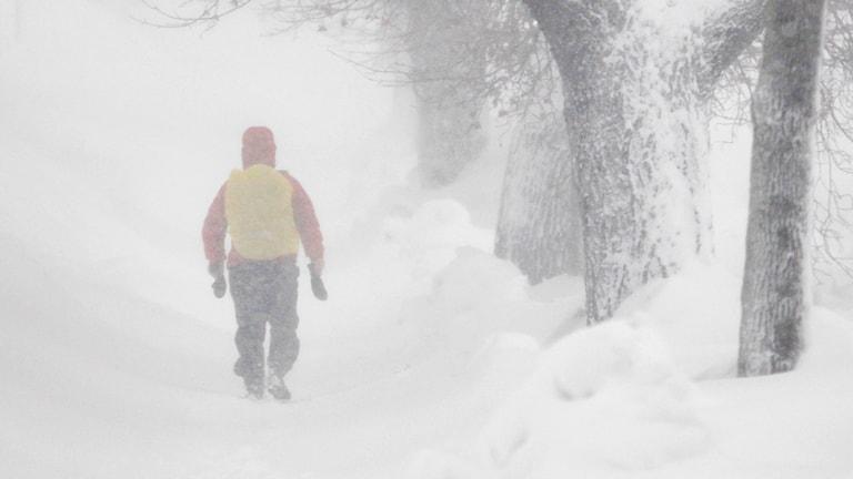 En person promenerar i snöstorm.