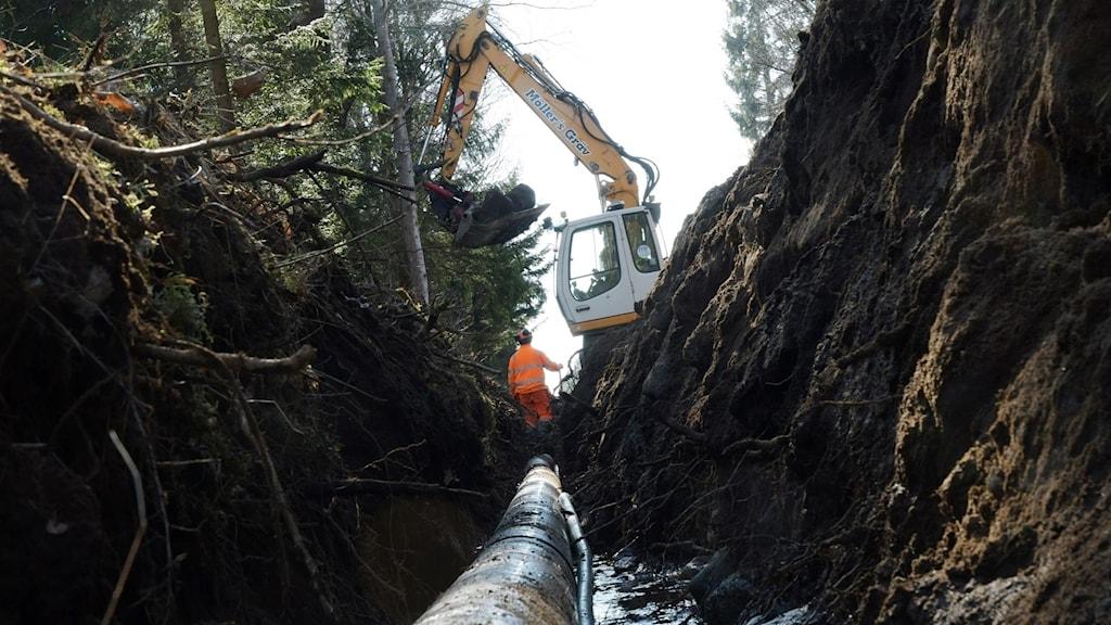 Myndigheter varnar för vattenbrist.