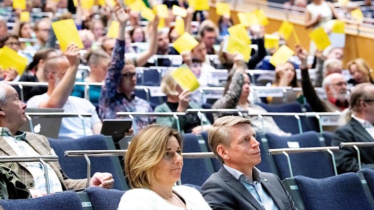 Isabella Lövin och Per Bolund under en omröstning under Miljöpartiets kongress.
