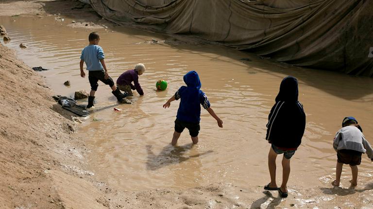 Barn i al-Hol-lägret i Syrien.