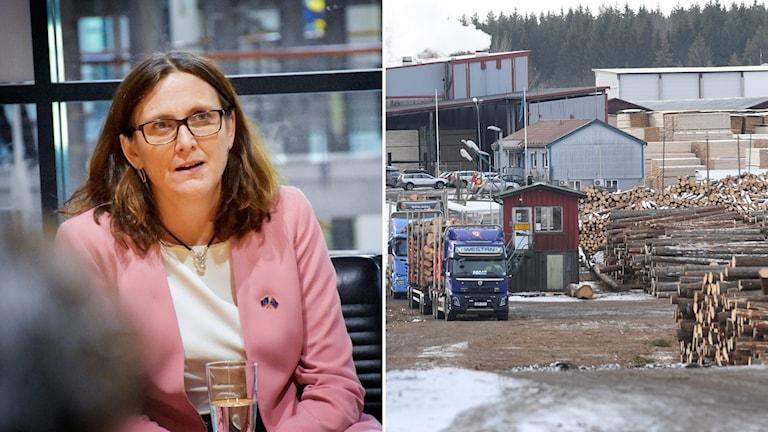 Cecilia Malmström och en bild från en svensk träindustri.