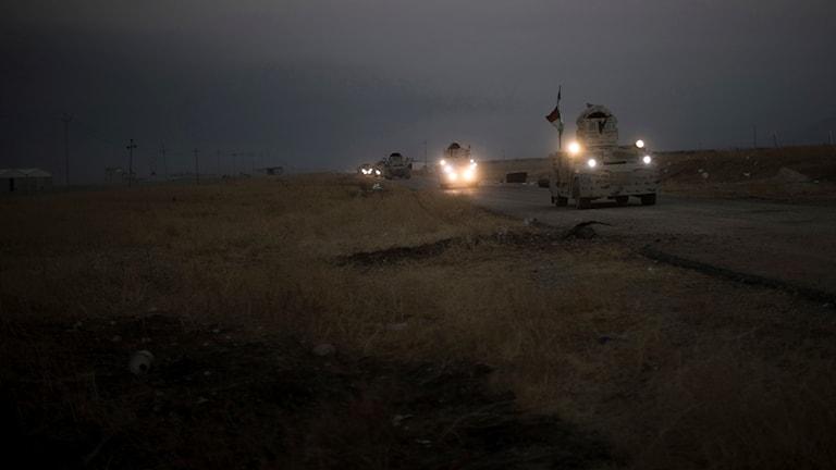 Mosul i Irak.