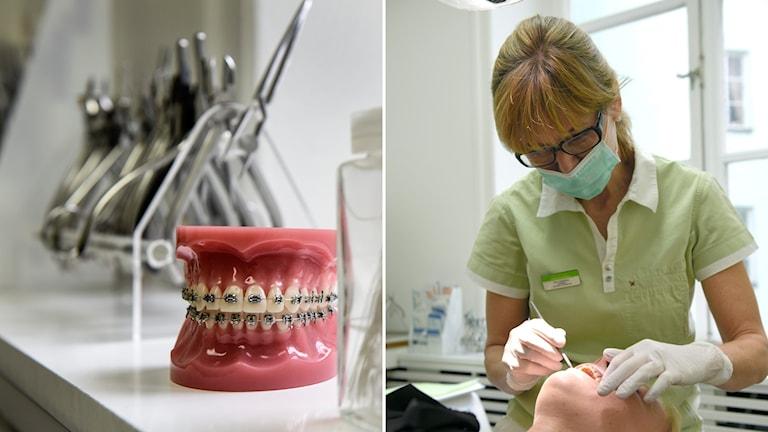 Tandläkare, tand, tandvård, tänder