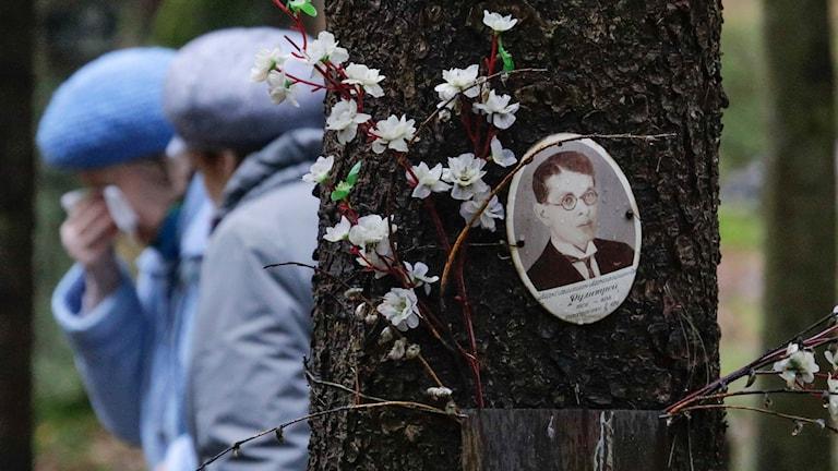 Kvinnor och ett porträtt på ett träd