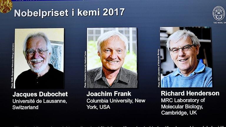 Nobelpriset i kemi