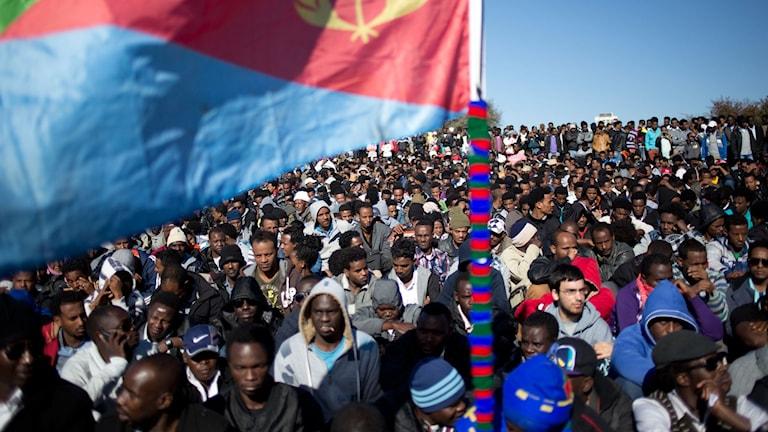 Arkivbild. Eritreas flagga hålls upp av afrikanska demonstranter under en protest i Jerusalem 2014.