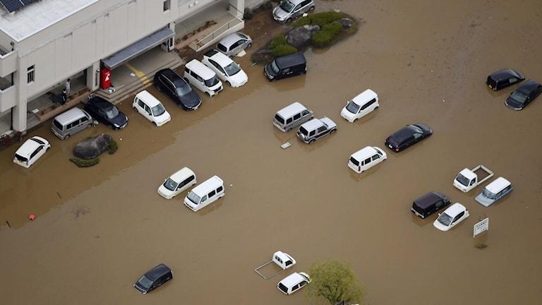 Staden Marumori har drabbats hårt av tyfonen Hagibis.