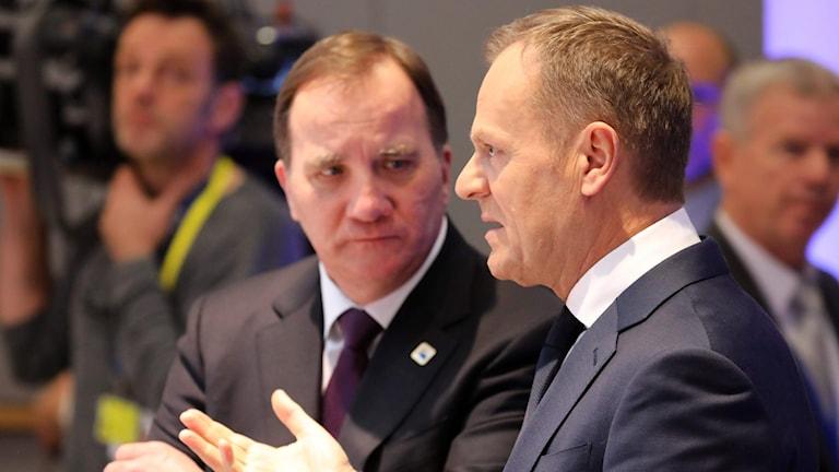 Stefan Löfven och Donald Tusk