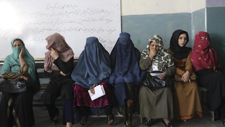 Väljare trotsar våld och hot i Afghanistan