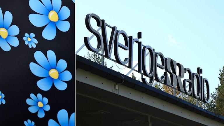 Delad bild: Sverigedemokraternas logga och Sveriges Radios logga