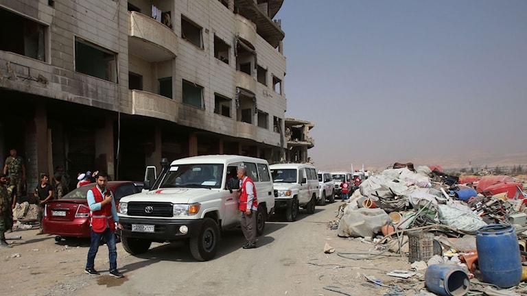 Ambulanser utanför Daraya gör sig redo att evakuera befolkningen och rebeller.
