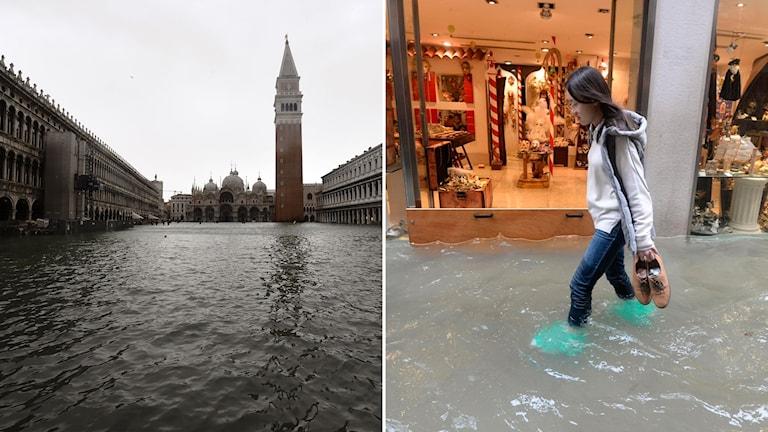 Oväder Italien Venedig översvämning
