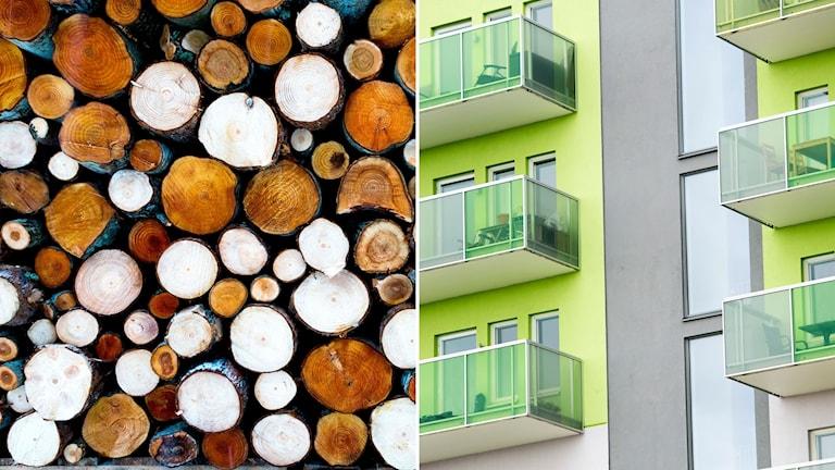 Timmerstockar och nybyggda bostäder.