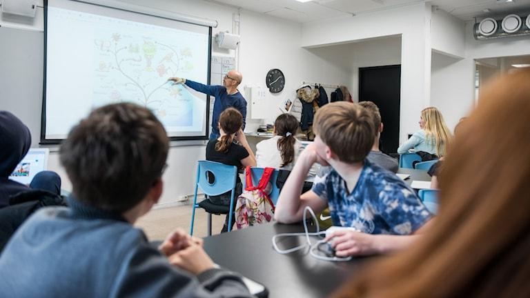 Mellanstadielever årskurs 6 jobbar med att söka via dator i den digitala Nationalencyklopedin tillsammans med manlig lärare i klassrum.