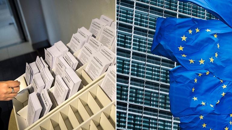 Valsedlar och EU-flaggor.