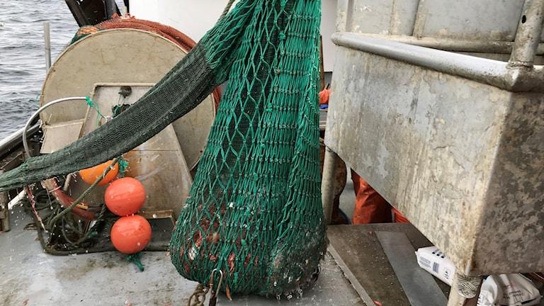 En trål på en fiskebåt