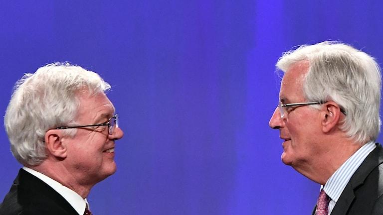 Storibritanniens brexitminister David Davis (t.v.) tillsammans emd EU:s motsvarighet Michel Barnier (t.h.)