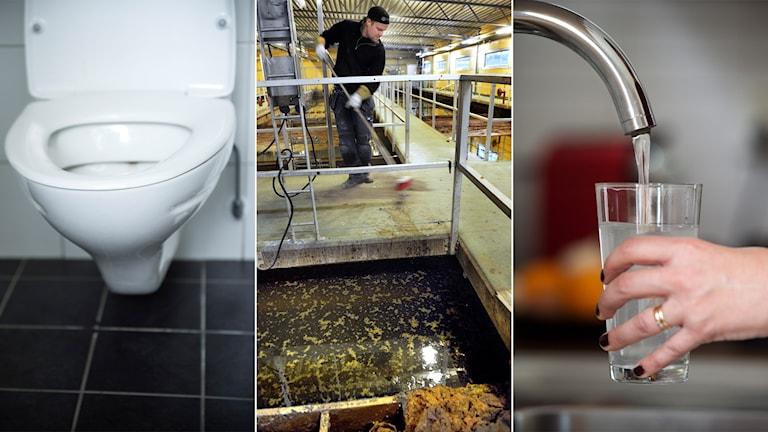 Tredelad bild: en toalett, ett avloppsreningsverk och en vattenkran
