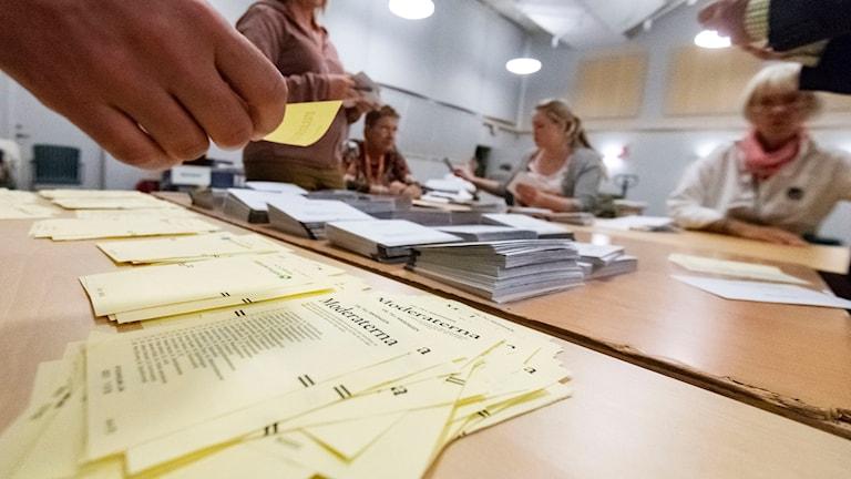 Valarbetare räknar röster i vallokalen på Kockum Fritid i Malmö på söndagskvällen.