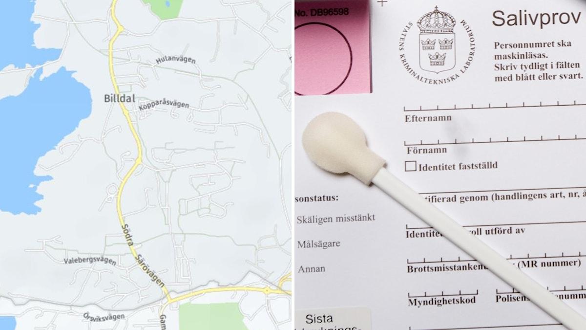 En karta över Billdal och ett topsningskit för DNA-prov.