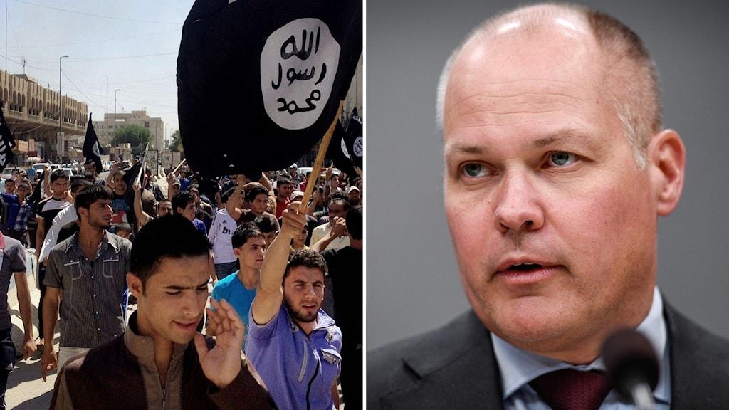 Arkivbild på IS-krigare och bild på justitieminister Morgan Johansson.