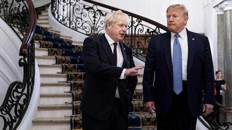 Två män framför en trappa.