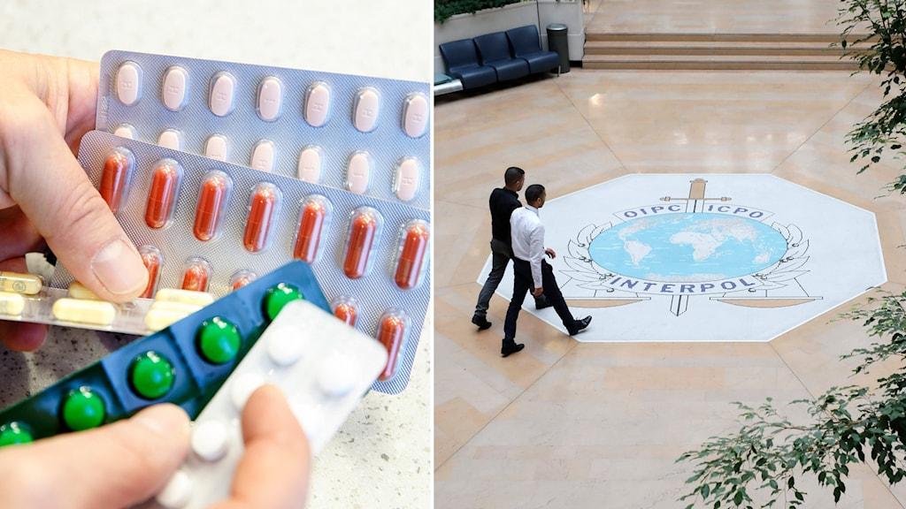 Bildsplit på läkemedel i en persons hand och två personer som går vid en interpol-logotyp på ett golv.