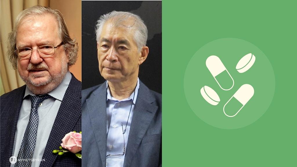 Nobelpristagarna i medicin, James P Allison och Tasuku Honjo