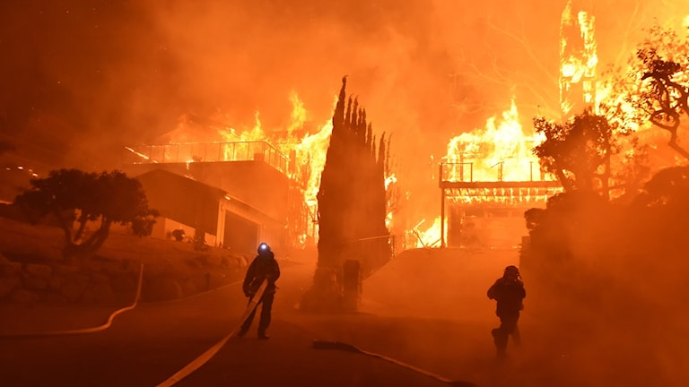 Skogsbrand i Kalifornien.