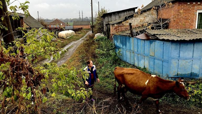 Ukrainas jord ska reformeras