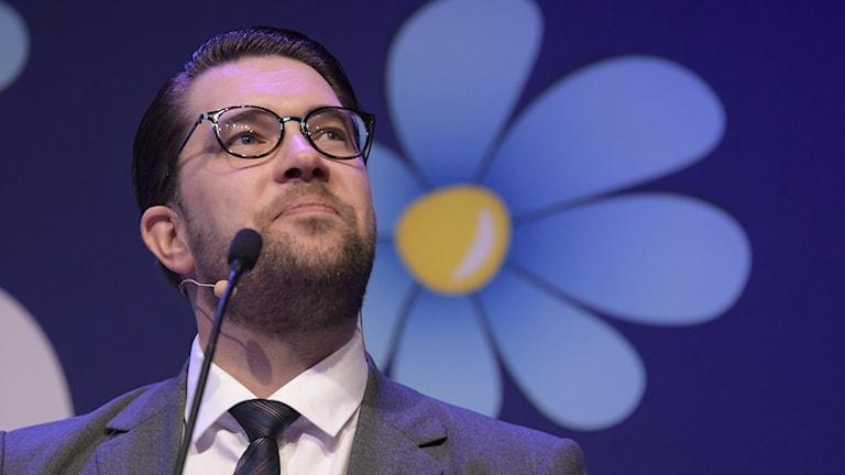 Sverigedemokraternas partiledare Jimmie Åkesson¨.