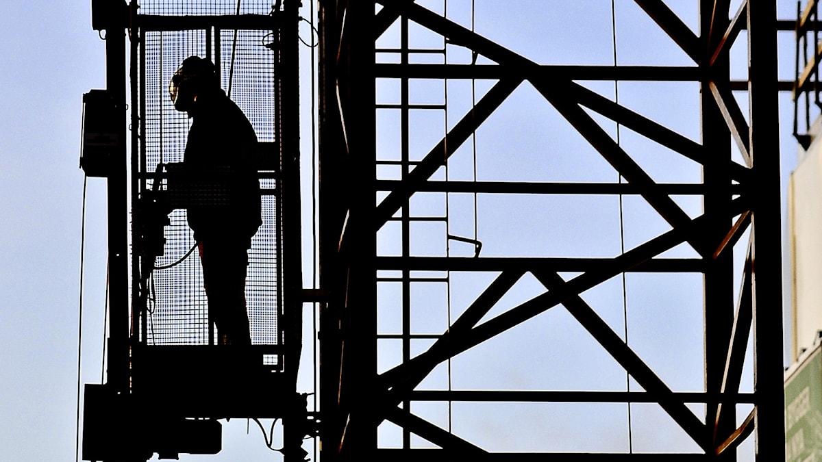 Utredning om arbetskraftsinvandring tillsätts