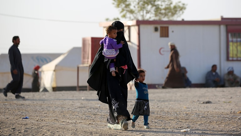 Flyktingar Irak -  Mosul