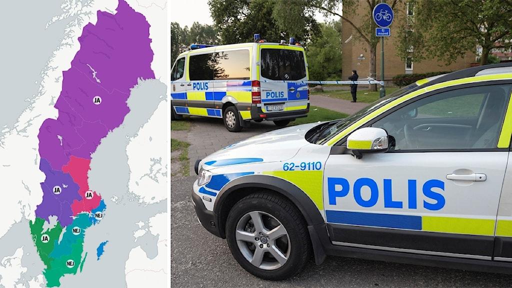 I fyra av landets sju polisregioner uppges att kriminella är verksamma i regionens asylboenden. Foto: Johan Nilsson/TT