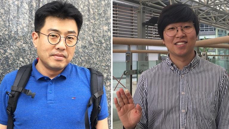 Delad opinion i Sydkorea