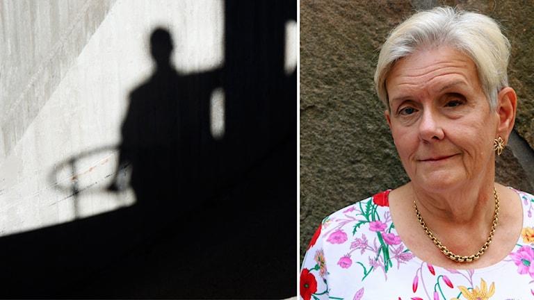 Lena Nilsson Schönnesson, ordförande Noaks Ark.