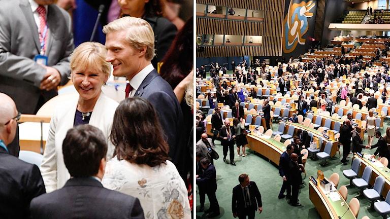 Wallström hoppas på en plats i säkerhetsrådet.