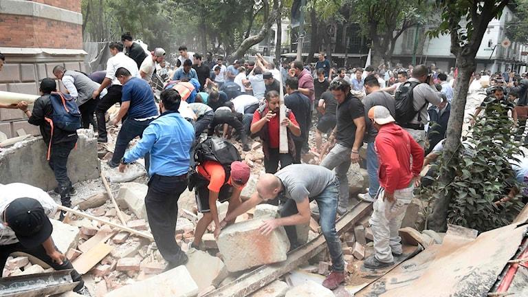 Människor i Mexico City röjer bland spillror och bråte efter det kraftiga jordskalvet som skakade Mexiko idag