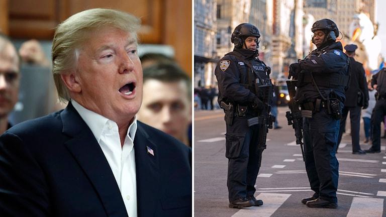 Donald Trump. Polis. Genre
