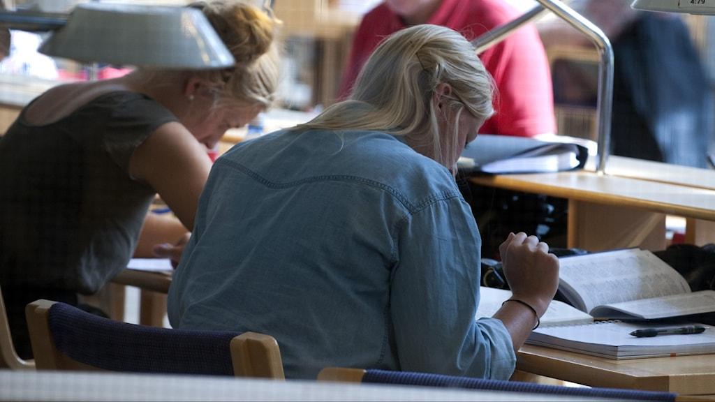 Antalet ansökningar till landets högskolor ökade i år, visar ny statistik