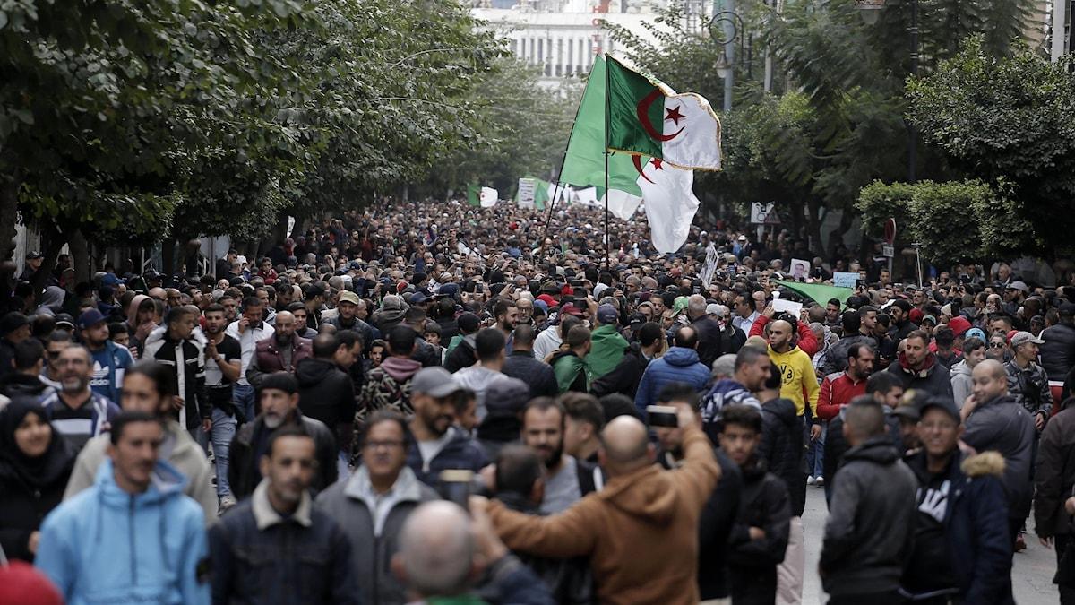 Demonstrationer i huvudstaden Alger.