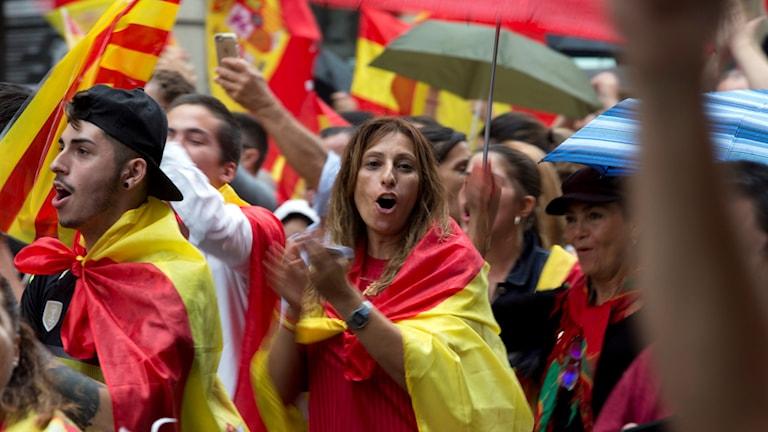 Demonstranter som inte vill se ett självständigt Katalonien demonstrerar insvepta i spanska flaggan.